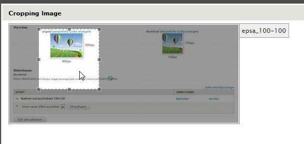 EPSA-Crop Bildausschnitt